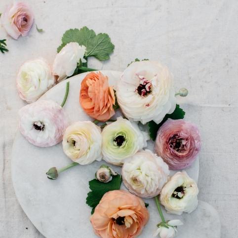 cherish the wedding scarf